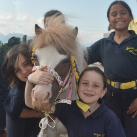 il pony club - SOCIETA' IPPICA TORINESE